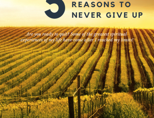 5 Biblical Reasons To Never Give Up